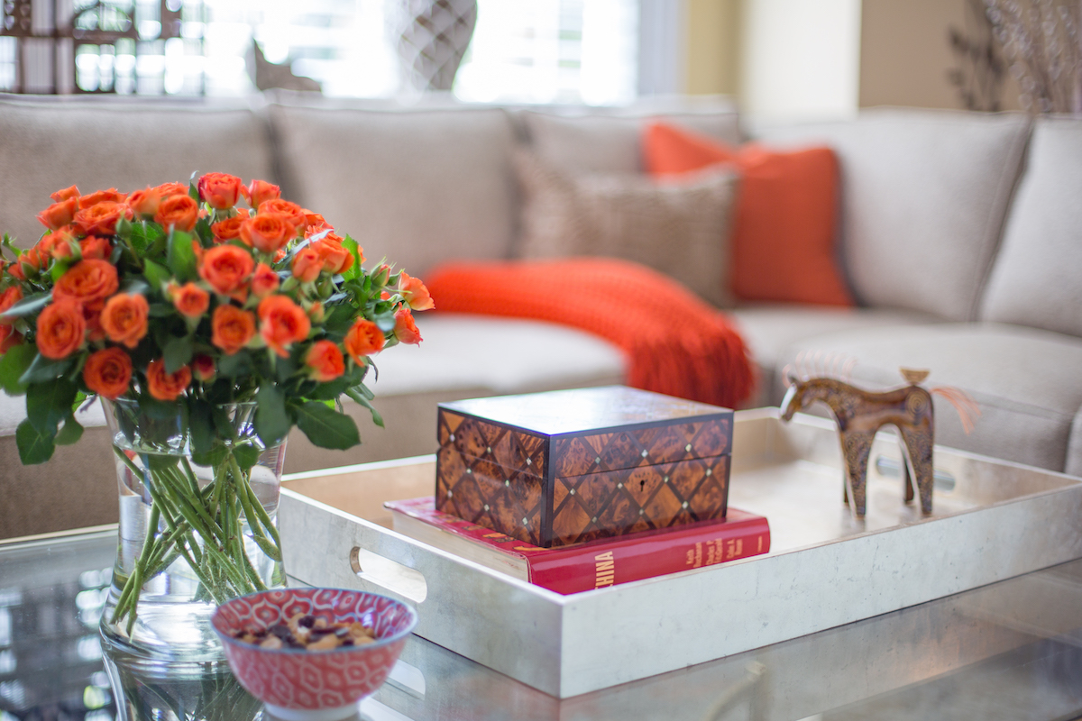 living-room-interior-design-coffee-table-tray-accents